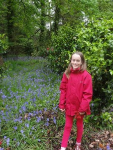 End of the bluebells